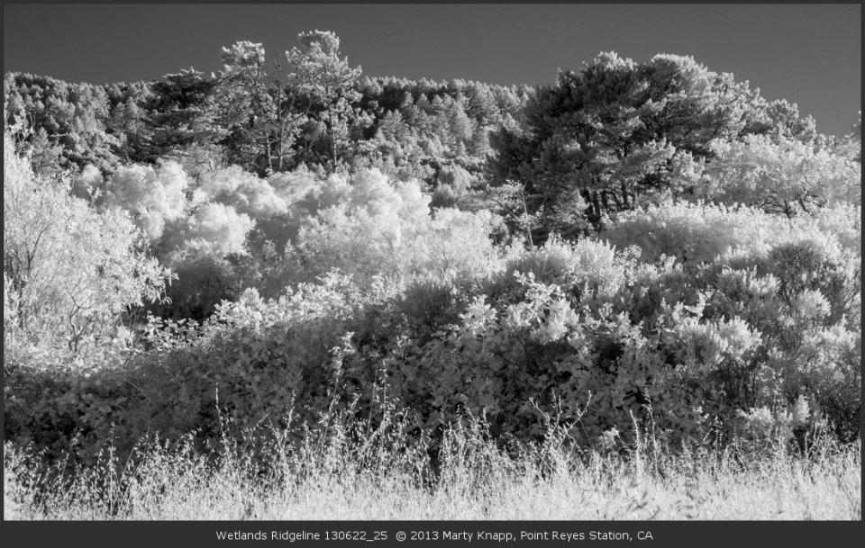 Wetlands Ridgeline 130622_25