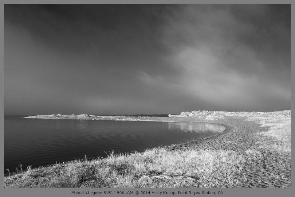 Abbotts Lagoon 31514 806 rAM