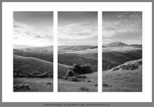 OLEMA HILL TRIPTYCH click for larger version